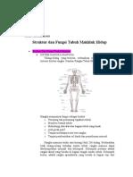 tugas struktur tubuh mh.docx