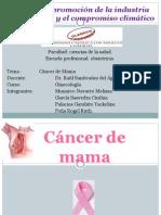 233553026-Cancer-de-Mama.ppt