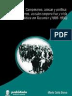 CAMPESINOS, AZÚCAR y POLÍTICA