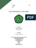 Referat Ileus Mekanik Et Causa Adhesi. Revisi 1 New New - Print