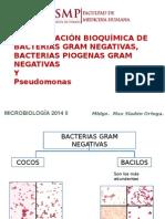 Identificación Bioquímica de Bacterias Gram Negativas
