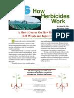 Herb Work