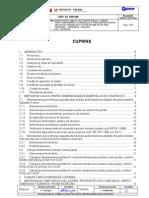 CAIET DE SARCINI - PODURI - LOT 2.pdf