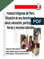 Pueblos Indigenas en El Peru