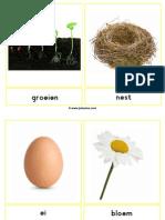 fotowoordkaartenlente
