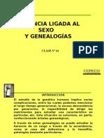 Herencias Ligadas Al Sexo y Genealogias