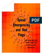Rowles_Evaluation of Pain_Red Flags
