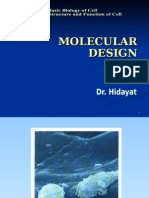 K - 1 Molecular Design of Life