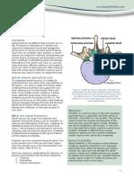 PE-SpineFract.pdf