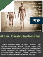 Sistem Muskoloskeletal Tira