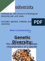 biodiversity, speciation, extinction