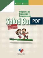 Programa Educativo SALUD BUCAL