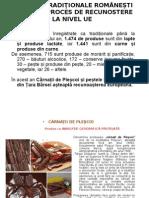 Cirnatii de Plescoi.ppt