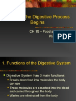 ch 15 2 the digestive process begins
