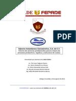 Informe de Servicios Profesionales