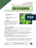 CultivoALBAHACA.pdf