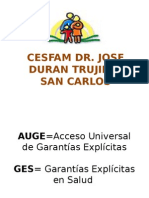 Presentacion Ges 2013 (1)