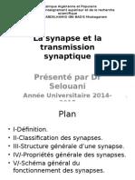 06-La Synapse Et La Transmission Synaptique