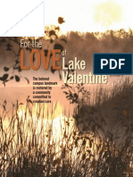for-the-love-of-lake-valentine