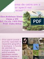 Introducerea dfhkfkfkdghkfghkgkfge Catre Om a Unor Specii Noi in Ecosisteme Ardelean Simina Clasa a Viiia