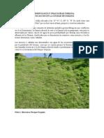 Geomorfología y fragilidad urbana Paleocauces en Parana