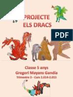 Projecte Dracs i Dragons