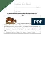 EVALUACION  DE LENGUAJE Y COMUNICACIÓN  SEGUNDO AÑO BASICO.docx