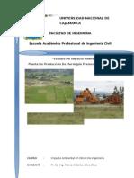 Estudio de Impacto Ambiental en Namora-cajamarca