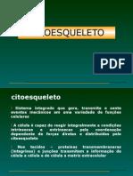 Aula UFF 1 de 2012 - Citoesqueleto