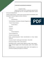 Ficha Descritiva de Depósitos Minerais (2)