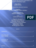 tarea de lectura 1.pdf
