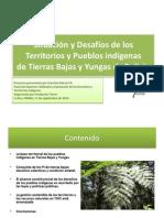 Desafíos de los Pueblos Indígenas