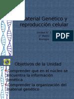 powerde2mediomaterialgenetico-120520202347-phpapp01