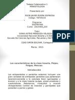 TRABAJO-COL Parasitologia Anderson Rivera