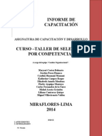 Informe de Capacitación Oficial