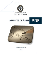 APUNTES DE ALGEBRA final (1).pdf