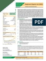 Meghmani Organics Detailed-Coverage Jan-20151