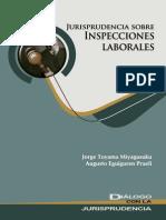 Jurisprudencia Sobre Inspecciones Laborales