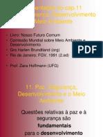 Conflitos e Ambiente (Apres.Cap.11 Relatório Brundtland)