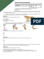 Evaluacion Cs Naturales Cuarto Basico