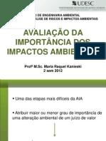 Aula 10 - Avaliação Importância Impactos