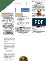 TRIPTICO MODOS DE PRODUCCION.doc