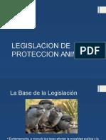 Legislacion de Proteccion Animal