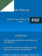 Eduardo Lauer GN.ppt