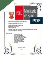 Informe Final de Salud y Sociedad i