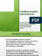 Fermentaciones Industriales 2