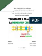 Trasnporte Celular