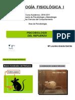 Tema 10-Psicobiologia Del Refuerzo