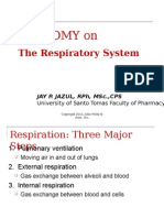Anatomy of the Respiratory System (1)