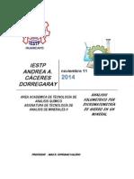 ANALISIS DE UN MINERAL DE HIERRO.pdf